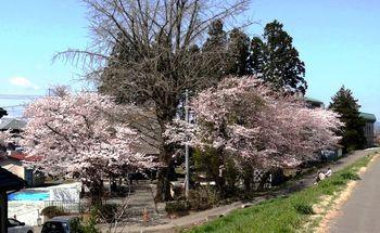 20150412 Ochiai-Kannon.jpg