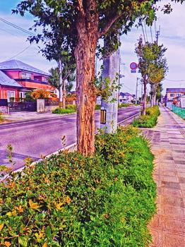 20151022 Kinjo.jpg