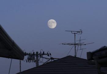 20151026 moon2.jpg