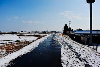 20160131 Snow2.jpg