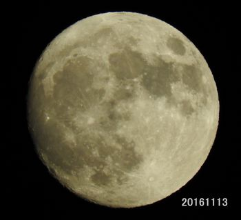 20161113 Moon toubai.jpg