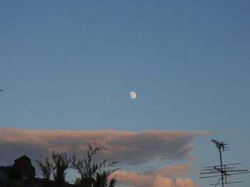 20170903 moon 2.jpg