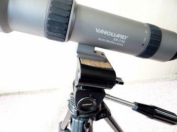 scope 2.JPG