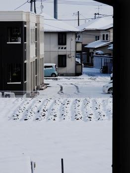 20160130 Snow.jpg