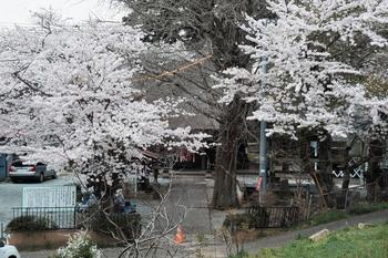 20170416 Ochiai-kannon.jpg