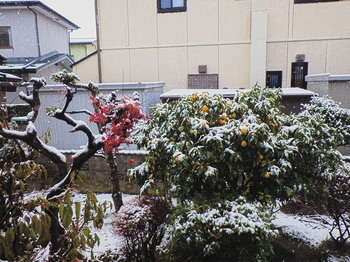 20171212 niwa snow.jpg