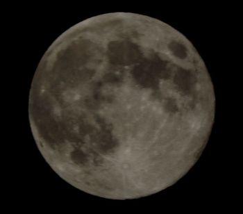 20190420 moon.jpg